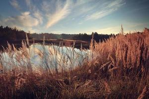 landscape lake in autumn sun
