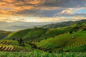 Terraced rice and landscape  Chiang Mai photo