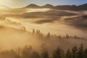 Increíble paisaje de montaña con niebla densa.