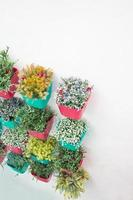 flores con jarrón de plástico colorido cuelgan en fila.