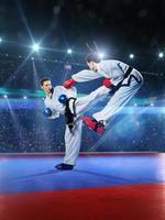 duas lutadoras profissionais de karatê estão lutando