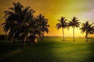puesta de sol en pueblo indio foto