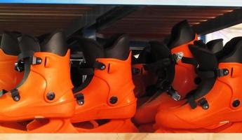 Orange ice skates in a row in a shelf.