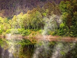 lago del pantano