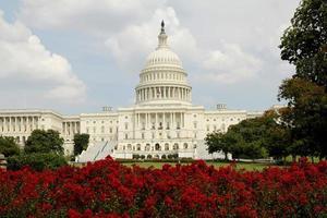 Capitol Building DC photo