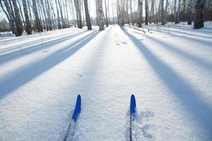 pista de esquí