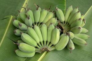 plátano verde foto