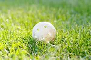 floorbal bal in groen gras