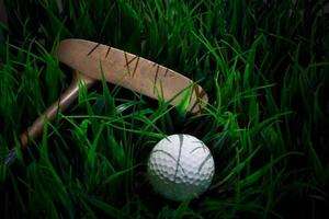 golf ball and putter on green field
