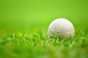 golf ball on grass photo