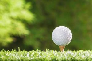 pelota de golf en clavijas foto