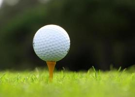 golf ball on the green photo