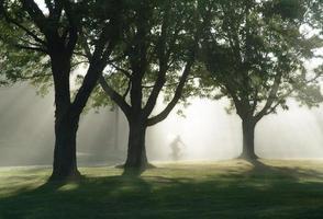 Biking in a misty morning photo
