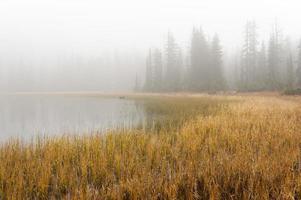 lago despiadado en la niebla foto