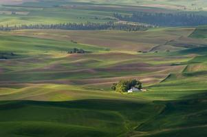 parque estatal de steptoe butte.