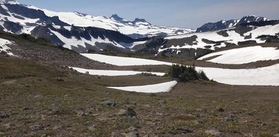 Hiking Mount Rainier Sunrise Yellow Wildflowers Snow Fields photo