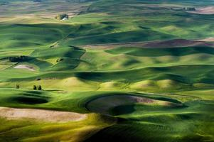Steptoe Butte State Park.