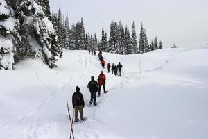 Hikers in Mt Rainier