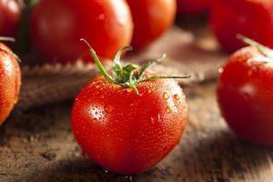 tomates maduros rojos orgánicos