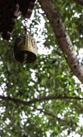 Thailand bell photo