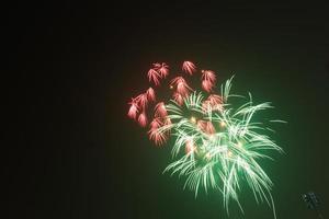 los fuegos artificiales celebran