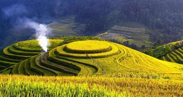 terrasvormige rijstvelden