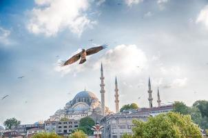 mosque in istanbul photo
