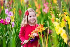criança colhendo flores frescas tipo gladíolo