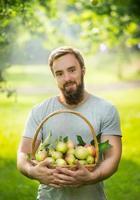 man beard, smiling holding  basket apples natural background, photo