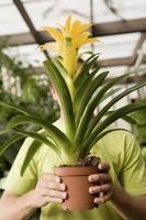 Hombre sosteniendo una gran planta de flores delante de la cara