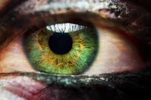 Close up green eye vampire female