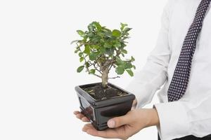 Midsection of businessman carrying potted plant photo