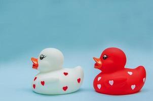 Following Ducks photo
