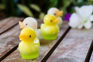 cute duck jelly dessert with flower background
