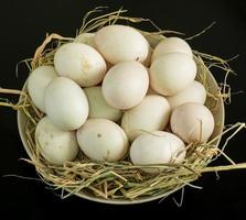 Duck eggs for cooking