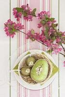 Easter eggs with flowering branch photo