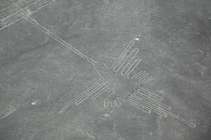 colibri, lineas de nazca, peru foto