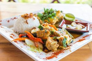 Traditional Balinese cuisine. Vegetable and chicken stir-fry with rice. photo