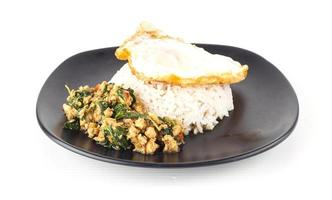 Dish of rice  egg and stir fried chiicken with basil photo