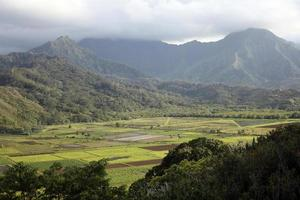 valle de hanalei, kauai, hawaii foto