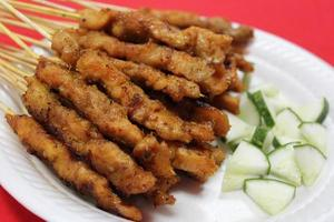 Satay , traditional roasted kebab meat skewers photo