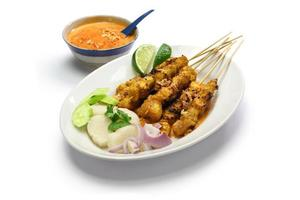 chicken satay, indonesian cuisine photo