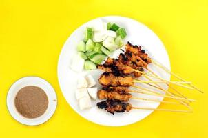 Asian food of satay