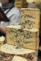 Different sized portions of blue cheese staked photo