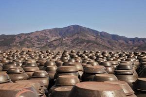 Traditional Korean Kimchi Pots photo