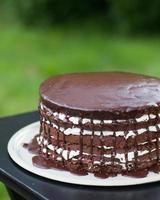 Chocolate Layer Cake Dripping with Frosting