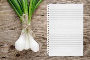 cebolla verde y papel para receta foto