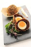 scotch manchester egg photo