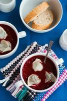 Ukrainian and russian national beetroot borsch with dumplings