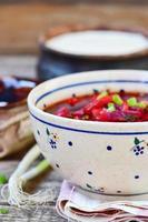beet fish soup photo